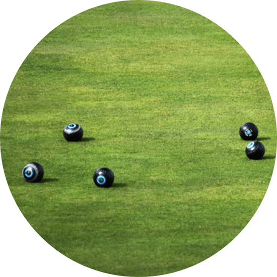 Five bowls scattered on grass.