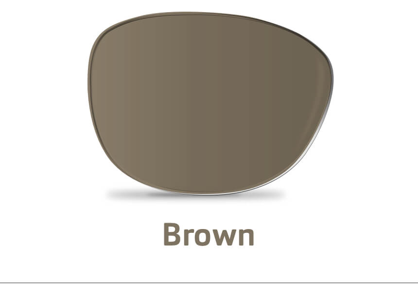 An image of a single brown lens.