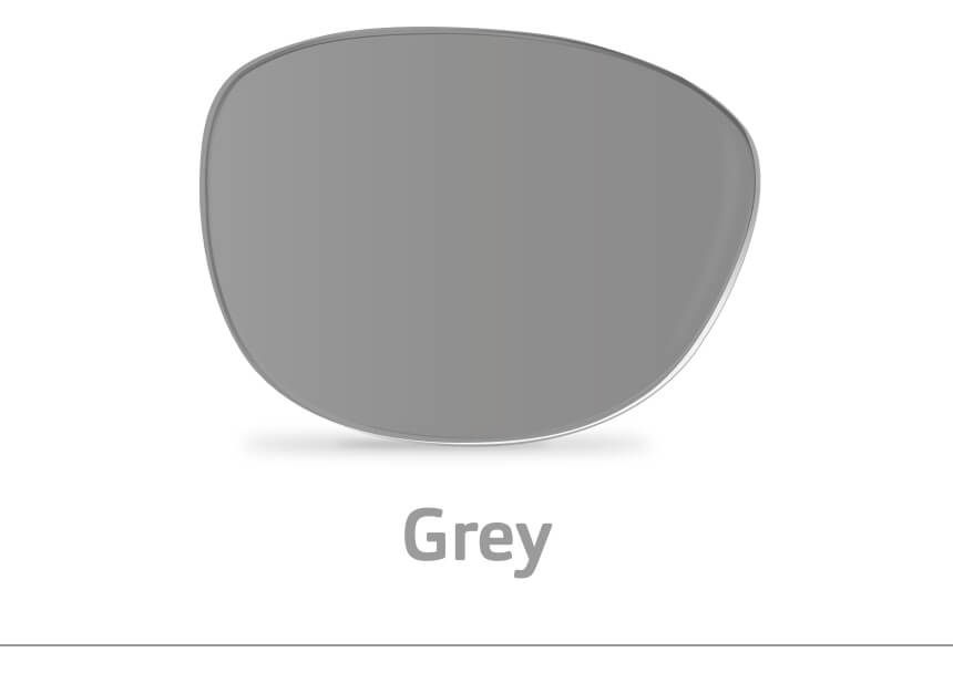 A image of a single grey lens.