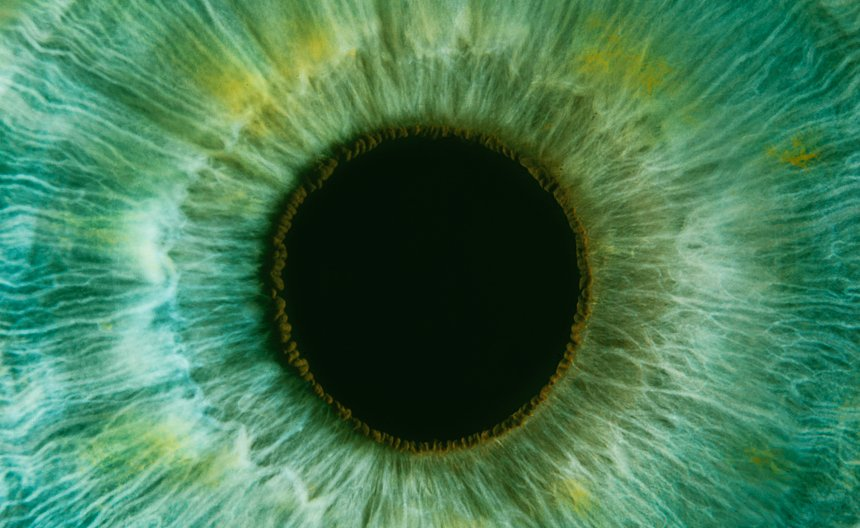 Close up photograph of eye.